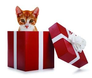Вклады с подарком